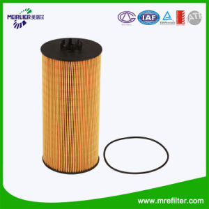 Mercedes Benz Engine Oil Filter Element E175HD129 pictures & photos