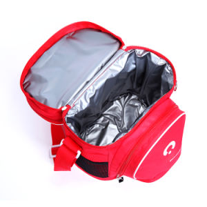 2017 New Design Best Price Washable Thermal Cooler Bag with Strip pictures & photos