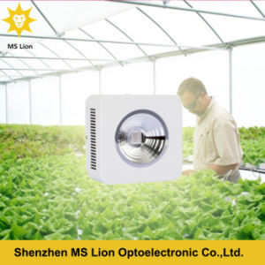Chinese Lighting COB LED Grow Lamp 200W