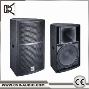 10 Inch Powered PA Speaker Full Range Stereo Speaker System pictures & photos