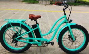 Powerful Fat Tyre Women Electric Bike 500/750/1000W pictures & photos