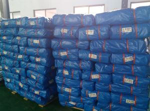 Hot Sales HDPE Woven Fabric PE Tarpaulin pictures & photos