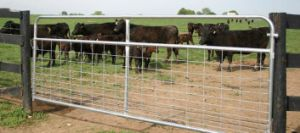 Rural Gates Farm Gate Hinges Galvanised Farm Gates pictures & photos