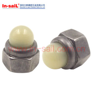 China Fasteners Manufacturer Hex Nylon Insert Cap Nut Shenzhen Export pictures & photos