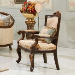 Antique Fabric Living Room Sofa Set with Coffee Table for Home pictures & photos