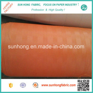 Polyester Fabric of Filter Net in Desulfurization System pictures & photos