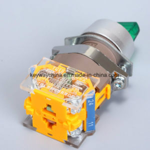 Illuminated Rotary Push Button Switch (LA118A series) pictures & photos