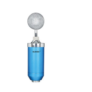 Condenser Mic Recording Small Bottle Computer Mic