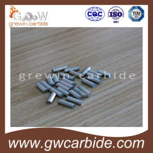 Tungsten Carbide Hexagonal Prisms Octagonal Prisms pictures & photos