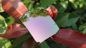Colorful Eyeglasses Polarized Tac Lens (T White Pink) pictures & photos