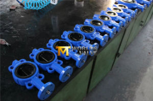 Double Half Stem Rubber Coating Butterfly Valve (D371J) pictures & photos