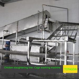Turkey Abattoir pictures & photos