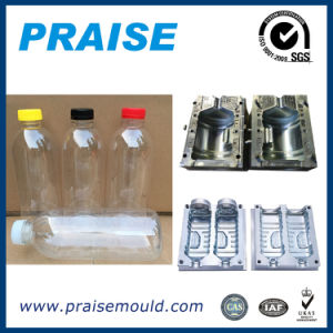 All Kinds of Plastic Blowing Mold Manufacture Bottle Mould Pet Moulding pictures & photos