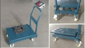 Haoyu New Design Trolley Weighing Scale with 4 Wheels Hand-Push pictures & photos