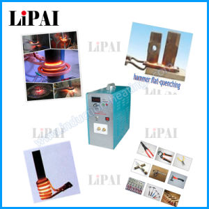 Mi-Ni Type High Quality Induction Heating Welding Machine pictures & photos