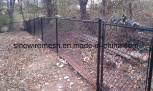 Protected Productspvc Coated Chain Link Fence for Ball Park pictures & photos