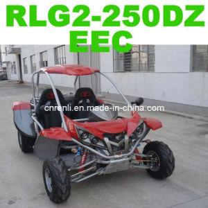 Go Kart EEC (RLG2-250DZ)