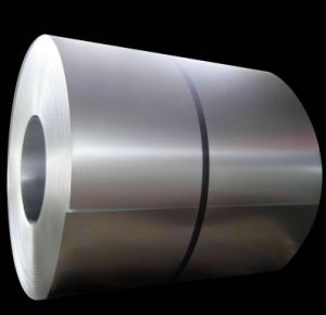 Stainless Steel Coil Sheet (201, 304, 304L, 316, 316L)