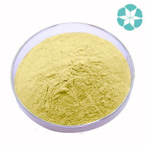 Ginger Extract / Zingiber Officinale Extract / Gingerols pictures & photos