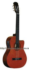 Guitar (CG209CE)