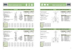 Gray Cast Iron Nrs Gate Valves (MSS-SP-70/BS5150(EN1171) PN16/PN25)