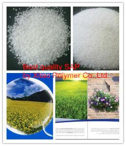 Water Absorbing Material (SAP) (MIC031)