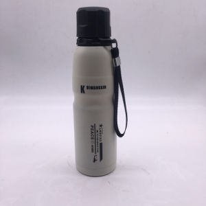 16 Oz Portable Double Layer Stainless Steel Water Bottle (SH-ST18) pictures & photos