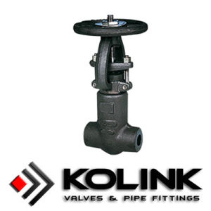 Forged Gate Valve, Pressure Seal Bonnet pictures & photos