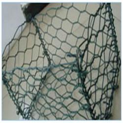 Anping Tianyue PVC & Galvanized Gabion Box (TYE-31) pictures & photos