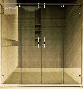 Lyre Series Stainless Steel Hardware Shower Doors Hs-2804