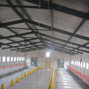 Steel Poultry Shed (PS-002) pictures & photos