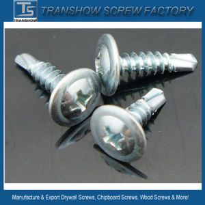 8*1 Modified Truss Head Self Drilling Screws pictures & photos