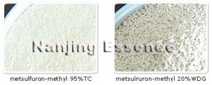 Highly Effective Metsulfuron-Methyl 20% Wdg pictures & photos