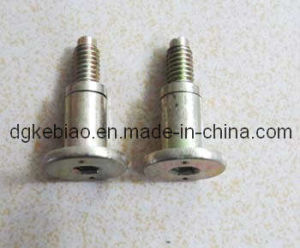OEM High Precision Stainless Steel Step Bolts (KB-008)