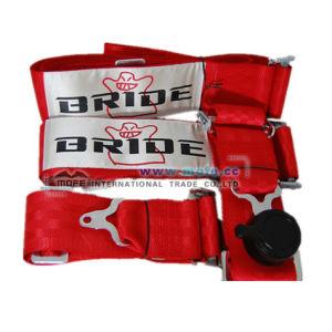 Bride Racing Seat Belts/Harness