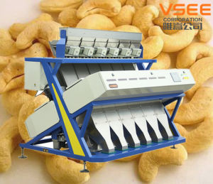 Automatic Walnuts Processing Machine RGB Type Color Selector pictures & photos