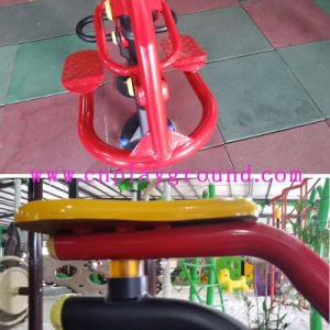 Body Building Equipment Outdoor Ride (HD-12501) pictures & photos
