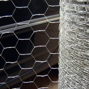 Galvanized Hexagonal Wire Mesh and Fence