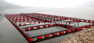 Plastic Fish Cage Modern Design Tilapia Farming pictures & photos