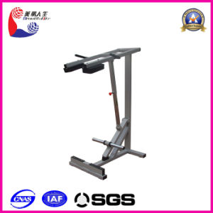 Stand Calf Raise Standing Calf Raise Gym Equipment