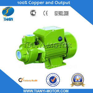 Qb 1HP Electric Water Pump Motor Price in India