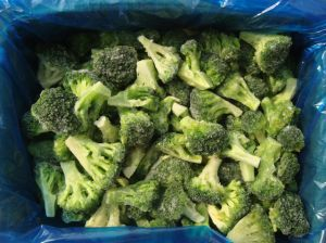 2017 IQF Broccoli pictures & photos
