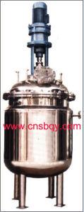 Sanitary Stainless Steel Reactor (SB056)