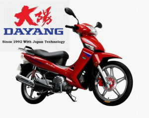 DAYANG *Star product* Cub Motorcycle 2010 (DY110-18)