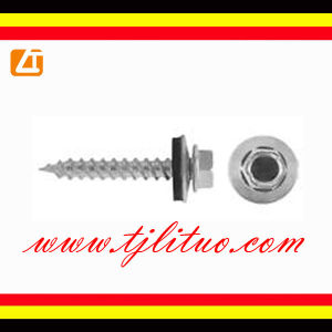 Hexagon Head Self Drilling Screws With EPDM Washers pictures & photos