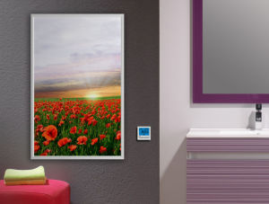Carbon Crystal Electric Heating Panel with Far Infrared Panel pictures & photos