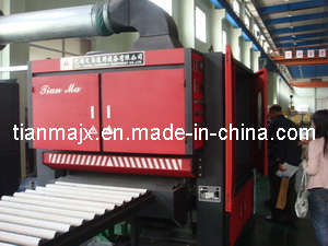 Steel Sheet Surface Grinding Machine (TM3102) pictures & photos