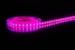 LED Strip Light (Purple)