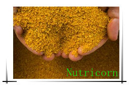 60%Corn Gluten Meal Fodder pictures & photos