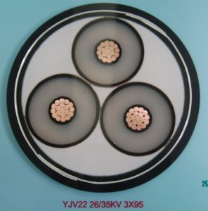 XLPE Insulated Cable and Multi Core pictures & photos